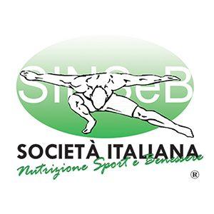 logo_sinseb