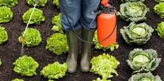Utilizzo dei pesticidi