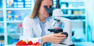 scienziata laboratorio microscopio fragole